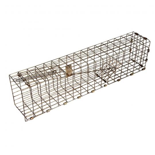Simple Squirrel trap